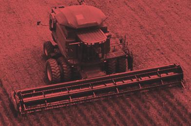 Сопровождение агробизнеса